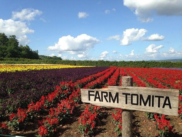 farm-1566163_640